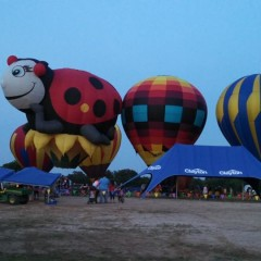 Hot Air Balloon At Dairy Fest This Weekend