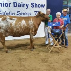 Northeast Texas Junior Dairy Show at the Dairy Festival