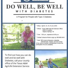 Do Well Be Well with Diabetes