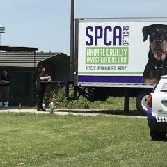 Hopkins County Deputies, SPCA Seize Approximately 50 Dogs, Find Approximately 50 Dead Dogs in Freezer at Northern Hopkins County Residence