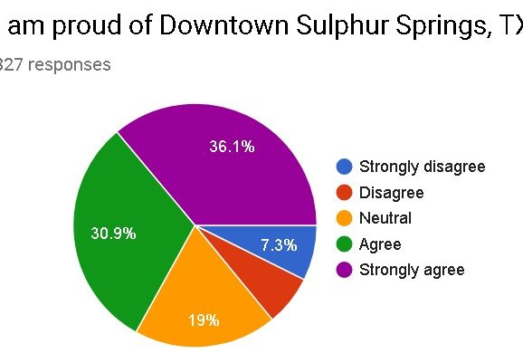 Downtown Satisfaction Survey: Results