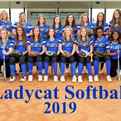 Lady Cats Softball Struggle With First Game Of Quarterfinal Playoffs